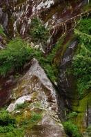 cliffbear_1