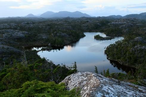 British Columbia, Canada, Great bear rainforest, August, summer,