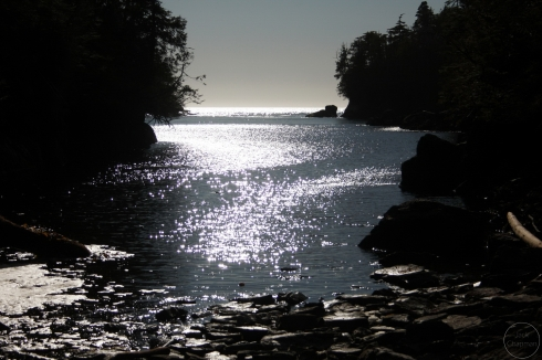 May, spring, Pacific Ocean, Inside Passage, island, Great Bear Rainforest, British Columbia, Canada