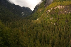 May, Spring, Coast mountains, Roscoe Inlet, temperate rainforest, Great Bear Rainforest, British Columbia, Canada
